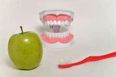 Οδοντόβουρτσα και πράσινο μήλο, οδοντική έννοια προσοχής Στοκ Φωτογραφία