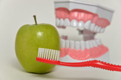 Οδοντόβουρτσα και πράσινο μήλο, οδοντική έννοια προσοχής Στοκ φωτογραφίες με δικαίωμα ελεύθερης χρήσης
