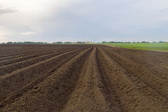 Ο οργώνοντας τομέας ενός αγρότη Στοκ φωτογραφίες με δικαίωμα ελεύθερης χρήσης