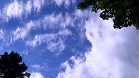 Ο ουρανός καλύπτει το μπλε φύσης απόθεμα βίντεο