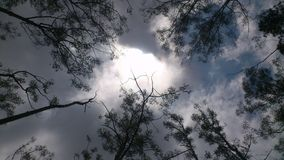 Ο ουρανός της Misty Στοκ φωτογραφία με δικαίωμα ελεύθερης χρήσης