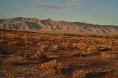 Ο ουρανός τοπίων αυγής ερήμων Mojave καλύπτει τη σειρά βουνών Στοκ Εικόνες