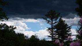 Ο ουρανός Στοκ Φωτογραφίες