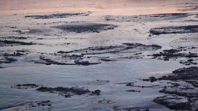 Ο πάγος διαμορφώνεται στον ποταμό το φθινόπωρο, φυσικό υπόβαθρο, ηλιοβασίλεμα, ποταμός Ob, Ρωσία απόθεμα βίντεο