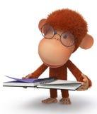 Ο πίθηκος που φορά τα γυαλιά διαβάζει Στοκ φωτογραφία με δικαίωμα ελεύθερης χρήσης
