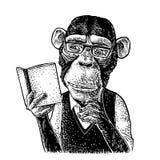 Ο πίθηκος hipster διαβάζει ένα βιβλίο Εκλεκτής ποιότητας μαύρη χάραξη διανυσματική απεικόνιση