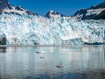 Ο παγετώνας συναντά τη θάλασσα Στοκ Εικόνα