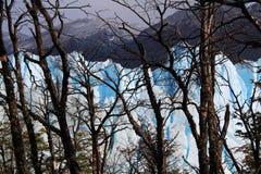 Ο παγετώνας Perito Moreno Στοκ Εικόνες