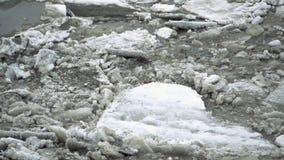Ο παγωμένος ποταμός πάγου λειώνει την άνοιξη με τη ροή νιφάδων πάγου Ραγισμένος πάγος που επιπλέει στο χρόνο ποταμών την άνοιξη Σ φιλμ μικρού μήκους