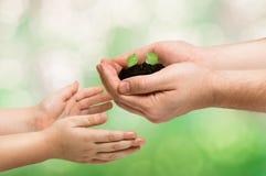 Ο πατέρας δίνει έναν μικρό νεαρό βλαστό στο μωρό, έννοια οικολογίας Στοκ Φωτογραφία