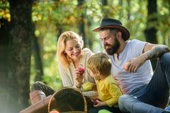 Ο πατέρας μητέρων και λίγος γιος κάθονται το δασικό πικ-νίκ Καλημέρα για το πικ-νίκ άνοιξη στη φύση Ενωμένος με τη φύση r στοκ εικόνα με δικαίωμα ελεύθερης χρήσης