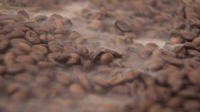 Ο παχύς αρωματικός καπνός κάλυψε βαριά έναν τεράστιο σωρό των φασολιών καφέ διεσπαρμένων απόθεμα βίντεο