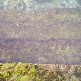 Ο παλαιός τρόπος σκαλοπατιών πετρών στο θαλάσσιο νερό με πράσινο στάζει Στοκ Φωτογραφίες