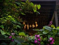 Ο παλαιός Edison Lightbulbs Στοκ Εικόνες