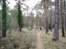 Ο περίπατος, ακολουθεί το δρόμο και δεν ξανακοιτάζει Στοκ εικόνα με δικαίωμα ελεύθερης χρήσης