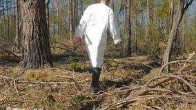 Ο περίπατος ατόμων μέσω του ξύλου απόθεμα βίντεο