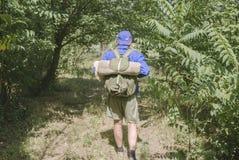 Ο περίπατος μέσω της forestMan μετάβασης σκοντάφτει σόλο στοκ φωτογραφία με δικαίωμα ελεύθερης χρήσης