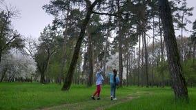 Ο περίπατος στο πάρκο στην άνοιξη δύο μικρή καυκάσια φίλη με την κιθάρα διαθέσιμη πηγαίνει στη δασική πορεία έννοια καθαρού απόθεμα βίντεο