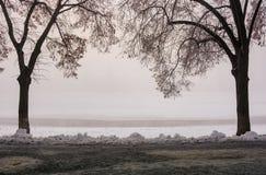 Ο περισσότερο ευρωπαϊκά η αλέα το χειμώνα στοκ φωτογραφία με δικαίωμα ελεύθερης χρήσης