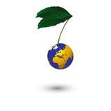 Ο πλανήτης κρεμά σε έναν κλάδο με τα πράσινα φύλλα Στοκ Φωτογραφία