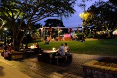 Ο πολίτης έχει τον ελεύθερο χρόνο σε ένα πάρκο εκτός από τον ποταμό του Μπρίσμπαν, Αυστραλία Η φωτογραφία λαμβάνεται την 1η Μαρτί στοκ φωτογραφίες με δικαίωμα ελεύθερης χρήσης