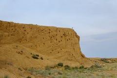 Ο πορτοκαλής απότομος βράχος αργίλου ερήμων με τις τρύπες καταπίνει τη φωλιά, πολύ γ στοκ εικόνες