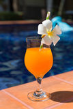 Ο πορτοκαλής καταφερτζής χυμού μάγκο φρέσκος πίνει τις παντόφλες κοκτέιλ κοντά στο s Στοκ εικόνες με δικαίωμα ελεύθερης χρήσης
