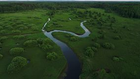 Ο ποταμός έχει πολλές πορείες απόθεμα βίντεο