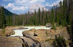 Ο ποταμός αλόγων λακτίσματος με την ΑΜ Stephen στο υπόβαθρο, εθνικό πάρκο Yoho, Βρετανική Κολομβία, Καναδάς στοκ εικόνες