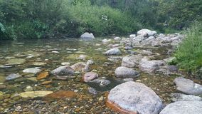 Ο ποταμός είναι ορατός και συγκεκαλυμμένος Στοκ φωτογραφία με δικαίωμα ελεύθερης χρήσης