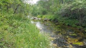 Ο ποταμός είναι ορατός και συγκεκαλυμμένος Στοκ εικόνες με δικαίωμα ελεύθερης χρήσης