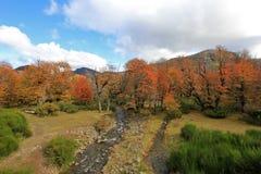 Ο ποταμός διαιρεί, ένας στον Ειρηνικό, άλλος στον Ατλαντικό, Arroyo Partido, Αργεντινή Στοκ φωτογραφία με δικαίωμα ελεύθερης χρήσης