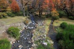 Ο ποταμός διαιρεί, ένας στον Ειρηνικό, άλλος στον Ατλαντικό, Arroyo Partido, Αργεντινή Στοκ Εικόνες