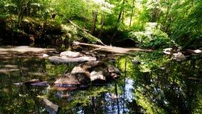 Ο ποταμός λικνίζει την τολμηρή κοινότητα φεγγαριών στοκ εικόνες