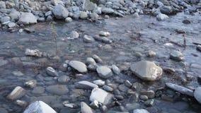 Ο ποταμός νερού που τυλίγει μερικές πέτρες απόθεμα βίντεο