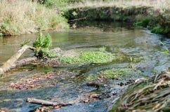 Ο ποταμός ρέει να λάμψει ήλιων Στοκ Φωτογραφίες