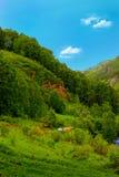 Ο ποταμός στην περιοχή βουνών. Στοκ Εικόνα