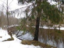 Ο ποταμός στον πάγο στοκ φωτογραφία