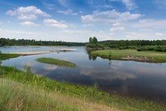 Ο ποταμός στο δάσος Στοκ Εικόνες