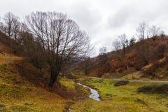 Ο ποταμός φθινοπώρου στα βουνά Στοκ Εικόνα