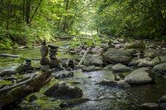 Ο ποταμός DÅ «kÅ ¡ TA ρέει στο περιφερειακό πάρκο Neris στη Λιθουανία Στοκ Φωτογραφίες