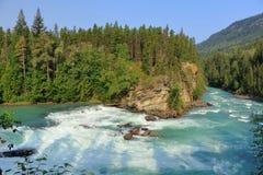 Ο ποταμός Fraser που ορμά πέρα από τις πτώσεις οπισθοφυλακής, τοποθετεί το επαρχιακό πάρκο Robson, Βρετανική Κολομβία στοκ εικόνες