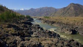 Ο ποταμός Katun βουνών φέρνει τα τυρκουάζ νερά του μέσω των δύσκολων ακτών και των απότομων απότομων βράχων των βουνών Altai στοκ εικόνες