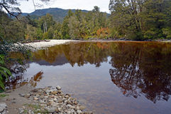 Ο ποταμός Oparara κοντά σε Karamea, Νέα Ζηλανδία Στοκ Εικόνα