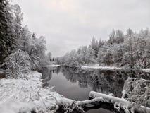 Ο ποταμός Oredezh Στοκ φωτογραφία με δικαίωμα ελεύθερης χρήσης