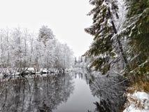 Ο ποταμός Oredezh Στοκ Εικόνα