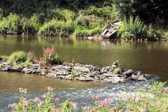 ο ποταμός Semois, βελγικές Αρδέννες Στοκ Εικόνα