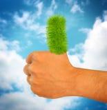 Ο πράσινος αντίχειρας χλόης πηγαίνει επάνω πράσινοι αντίχειρες επάνω στο χέρι Στοκ Εικόνα