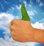 Ο πράσινος αντίχειρας χλόης πηγαίνει επάνω πράσινοι αντίχειρες επάνω στο χέρι Στοκ Εικόνες