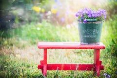 Ο πράσινος παλαιός κάδος με το campanula κήπων ανθίζει στο κόκκινο λίγο σκαμνί πέρα από το υπόβαθρο θερινής φύσης Στοκ Φωτογραφίες